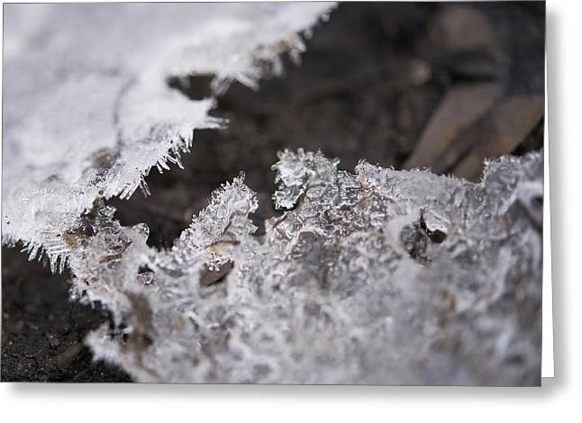 Fragmented Ice Greeting Card