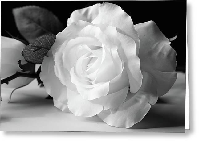 Fragrant Bloom Greeting Card