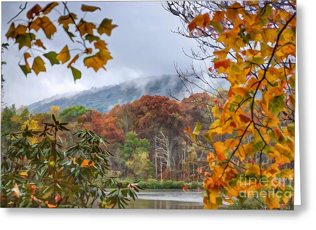 Framed By Fall Greeting Card