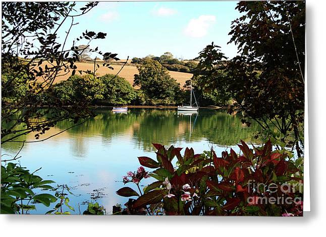 Framed By The Trees Greeting Card by Terri Waters