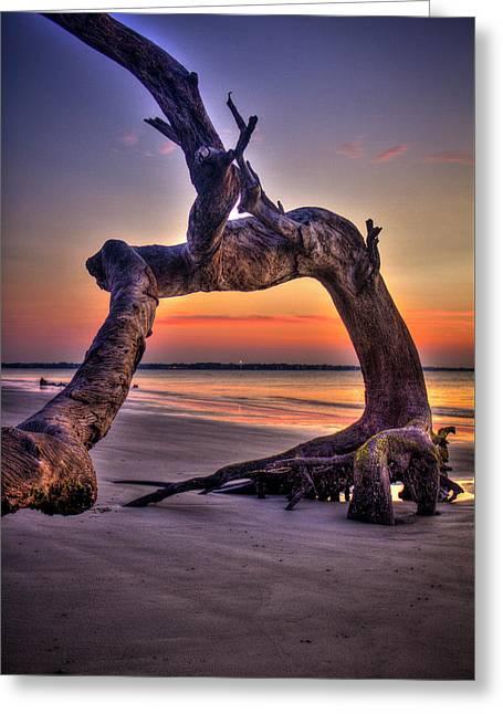Framed Driftwood Beach Jekyll Island St Simons Island Art Greeting Card by Reid Callaway
