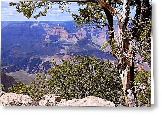 Framed View - Grand Canyon Greeting Card by Larry Ricker