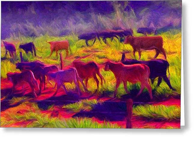 Franca Cattle 1 Greeting Card