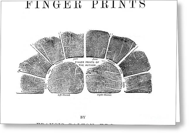 Francis Galtons Fingerprints, 1892 Greeting Card by Wellcome Images
