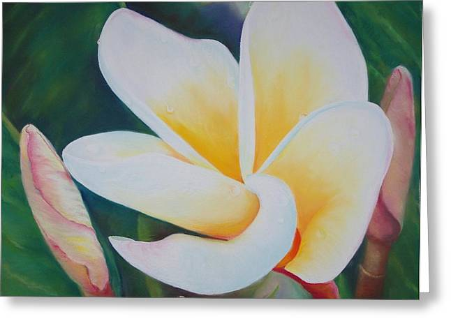 Frangipani After Rain Greeting Card by Loueen Morrison