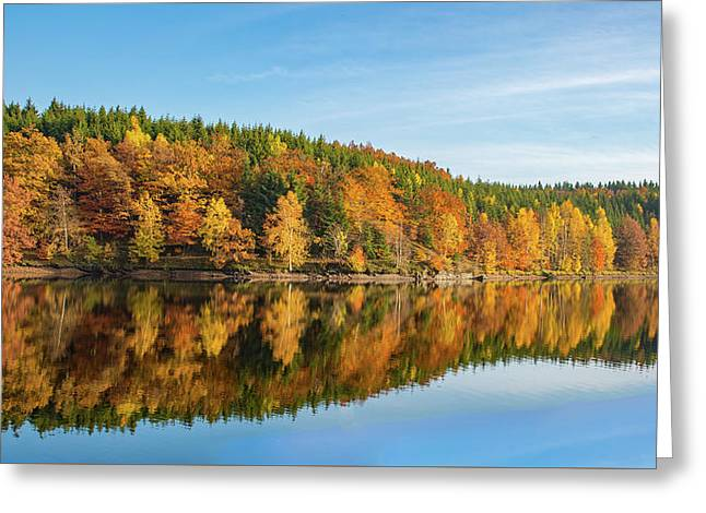Frankenteich, Harz Greeting Card