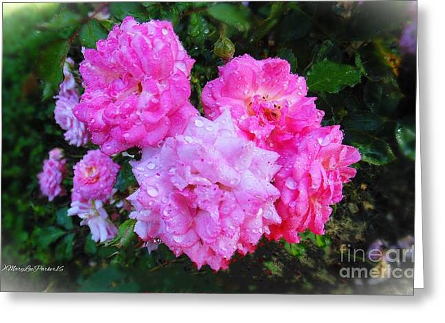Frank's Roses Greeting Card