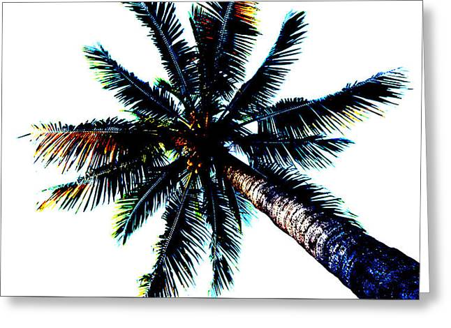 Frazzled Palm Tree Greeting Card