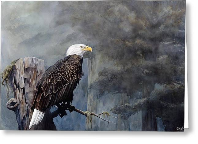 Eagles Greeting Cards - Freedom Haze Greeting Card by Steve Goad
