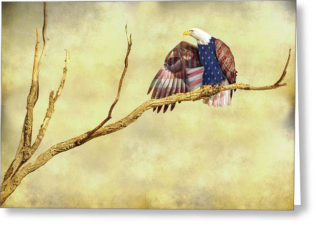 Greeting Card featuring the photograph Freedom by James BO Insogna
