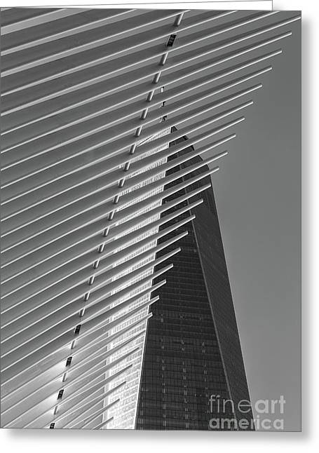 Freedom Tower And Oculus Iv Greeting Card