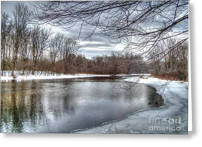 Freezing Up Greeting Card by Betsy Zimmerli