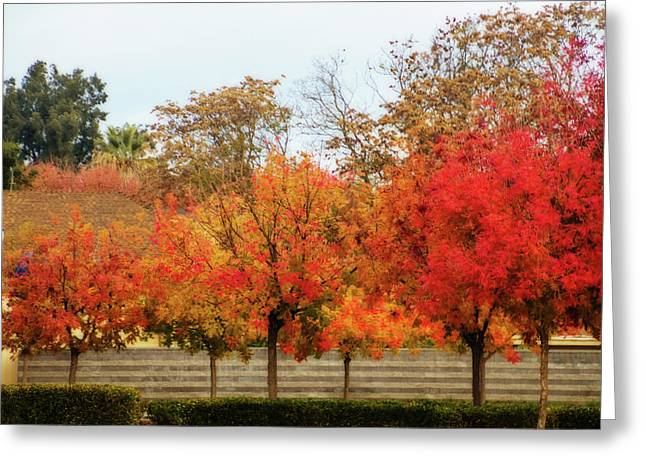 Fremont Street In Autumn Greeting Card