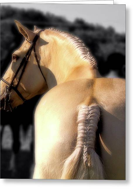 French Braid Greeting Card by JAMART Photography