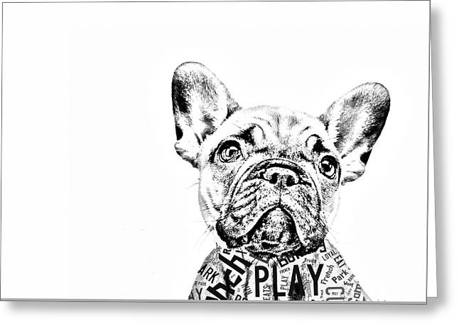 French Bulldog Portrait Greeting Card by Marvin Blaine