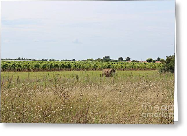 French Countryside Greeting Card by Cendrine Marrouat