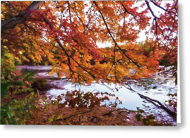 French Creek 15-107 Greeting Card by Scott McAllister