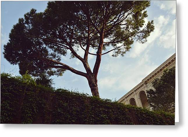 French Embassy Greeting Card by JAMART Photography