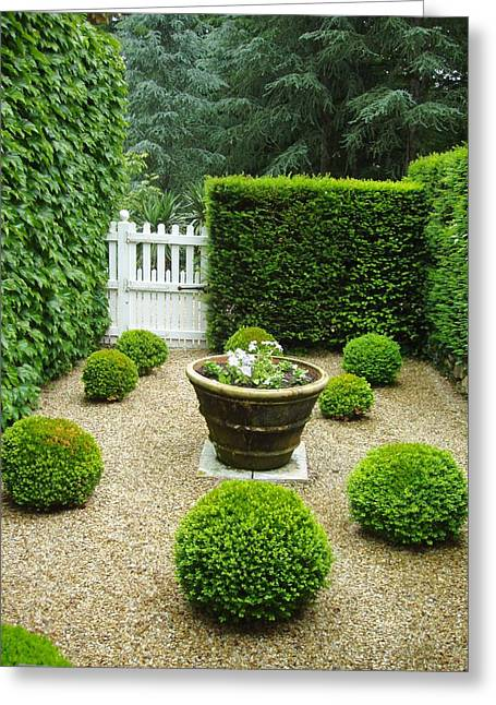 French Garden V Greeting Card by Wendy Uvino