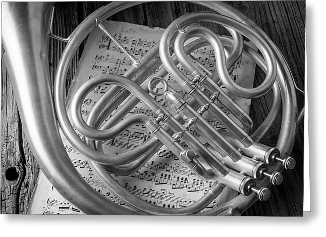 French Horn In Black And White Greeting Card by Garry Gay