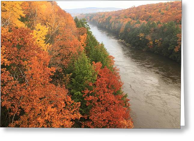 Connecticut River Greeting Cards - French King Gorge Foliage Greeting Card by John Burk