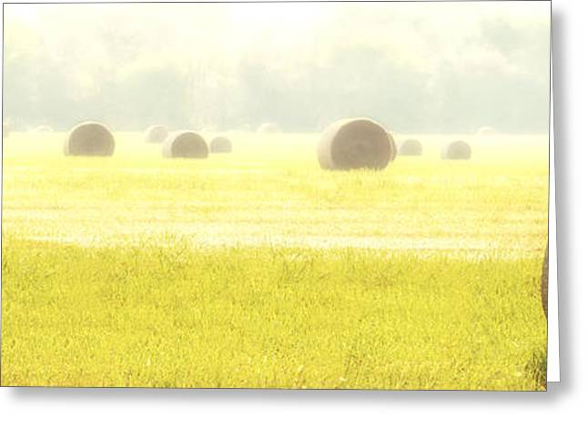 Fresh Hay In The Morning Greeting Card by Tamyra Ayles