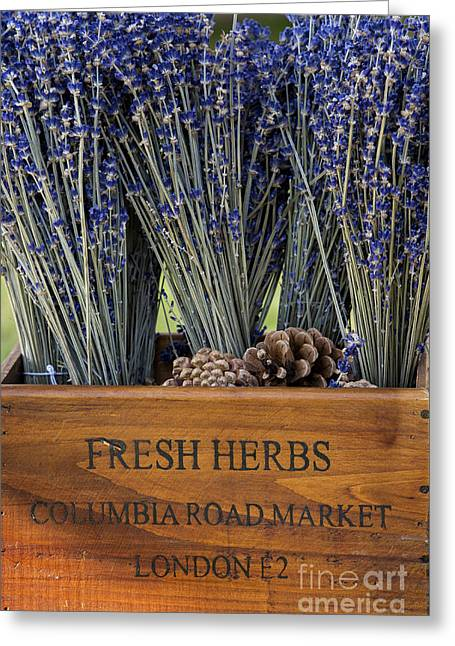 Fresh Herbs  Greeting Card by Tim Gainey