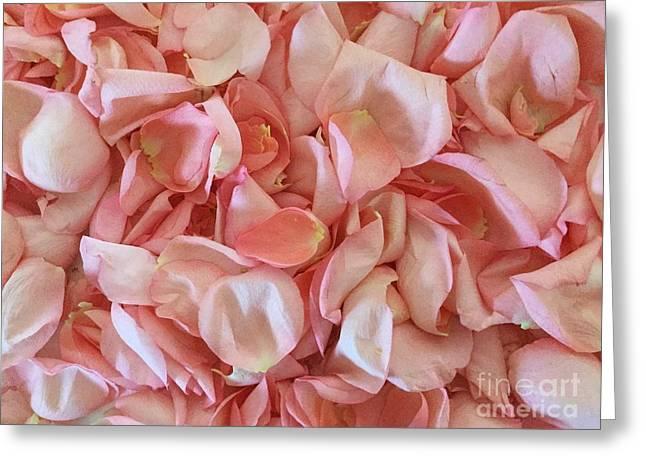 Fresh Rose Petals Greeting Card