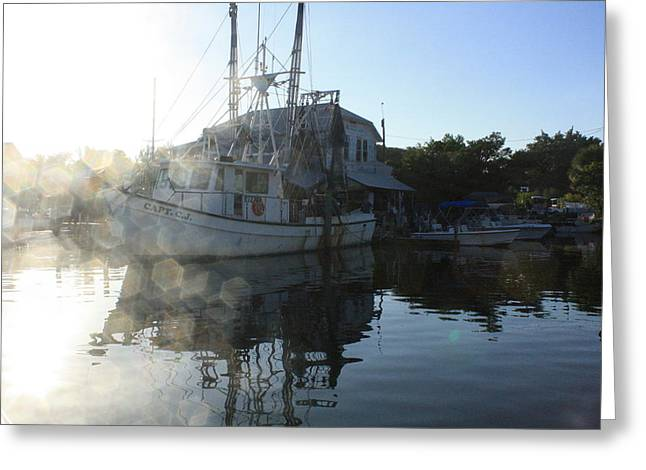 Fresh Shrimp Today Greeting Card by Tara Moorman Photography