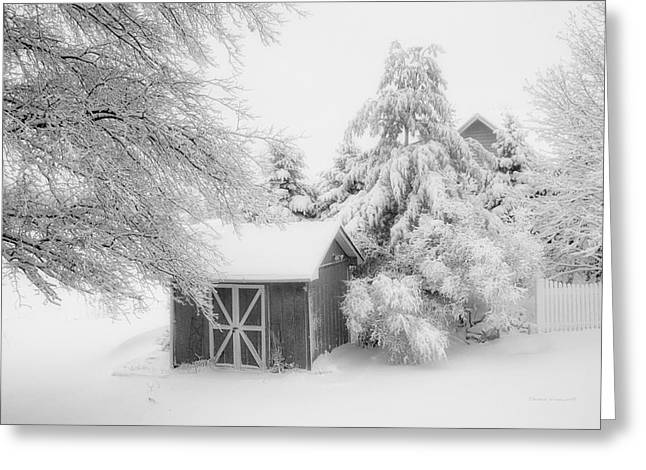 Fresh Snow Fall In March Bw Greeting Card by Thomas Woolworth