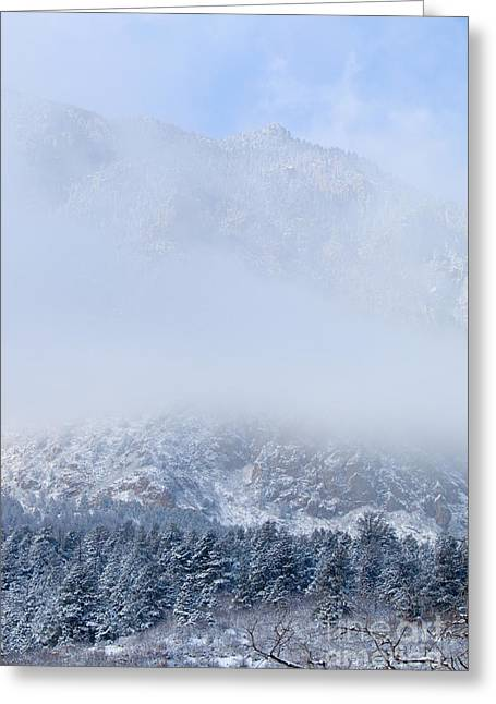 Fresh Snow In Cheyenne Mountain State Park Greeting Card