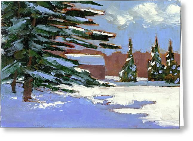 Fresh Snow Greeting Card by Mary Byrom