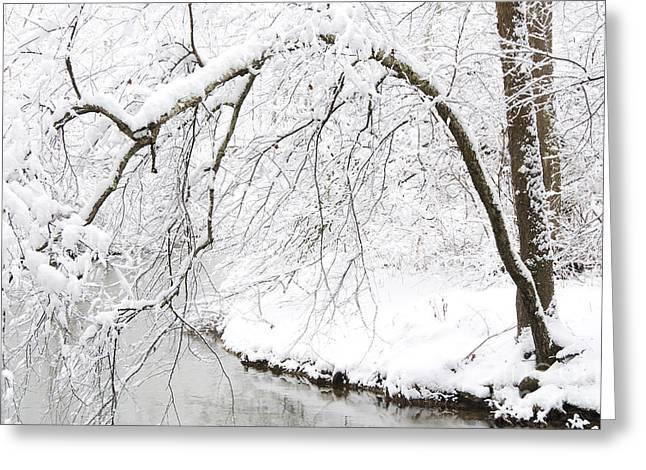 Fresh Snowfall On The River Greeting Card