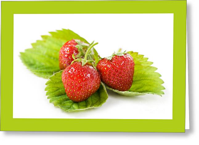 Fresh Strawberries Fruits Lying On Leaf On White  Greeting Card