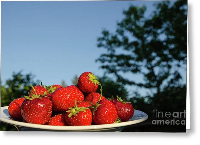 Greeting Card featuring the photograph Fresh Strawberriesl by Kennerth and Birgitta Kullman