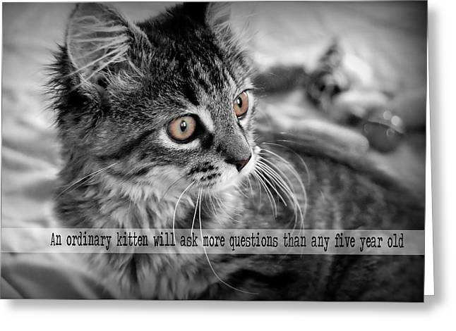 Freya Quote Greeting Card by JAMART Photography