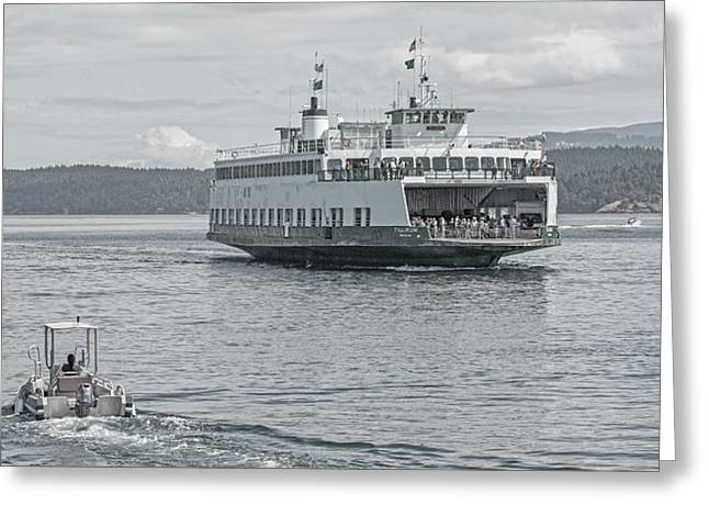 Friday Harbor New Arrivals Greeting Card