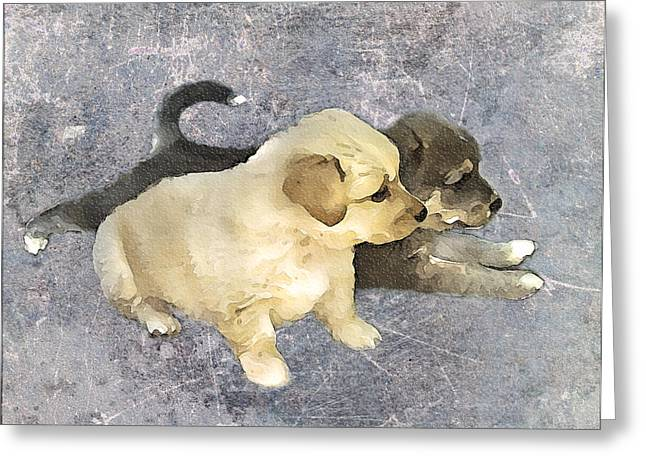 Friends Forever  Greeting Card by Svetlana Sewell