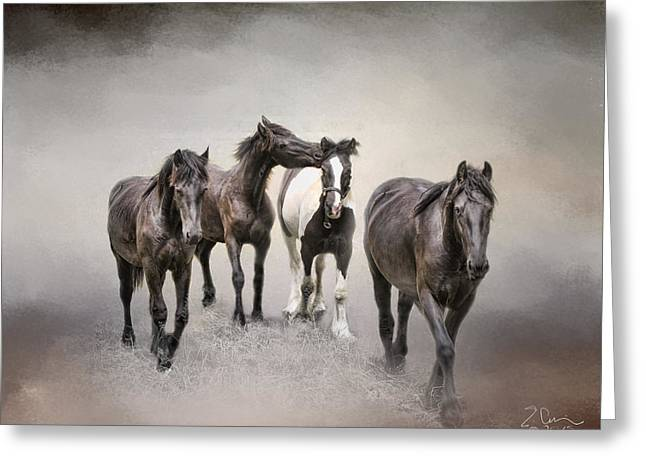 Friesian Horses The Boys And Baby Sister Greeting Card