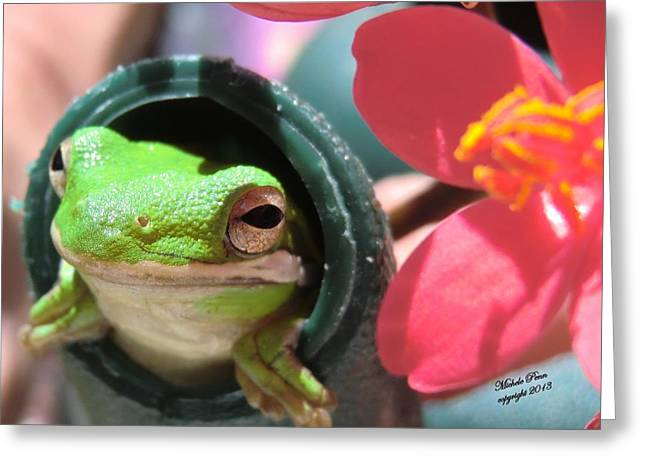 Frog At Selby Greeting Card by Michele Penn