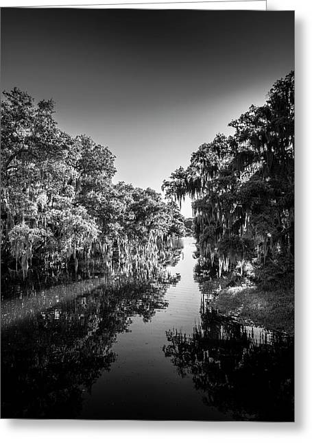 Frog Creek Greeting Card by Marvin Spates