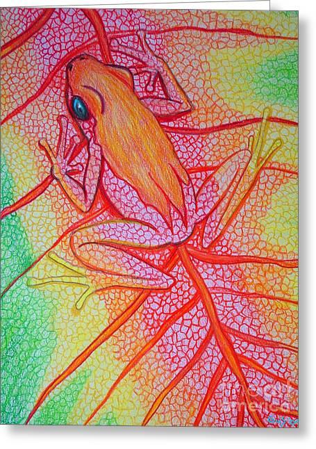 Frog On Leaf Greeting Card by Nick Gustafson