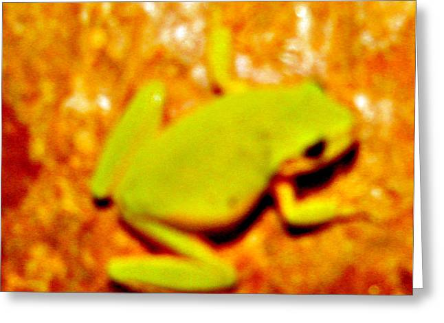 Frog On The Wall Greeting Card by Debra     Vatalaro
