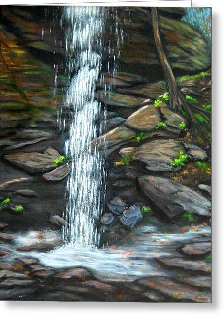 From Behind Moore Cove Falls Greeting Card by Sandy Hemmer