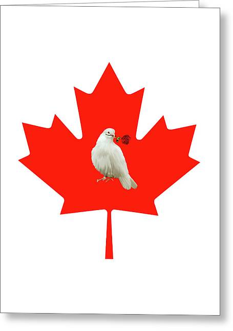 From Canada With Love Greeting Card by Munir Alawi