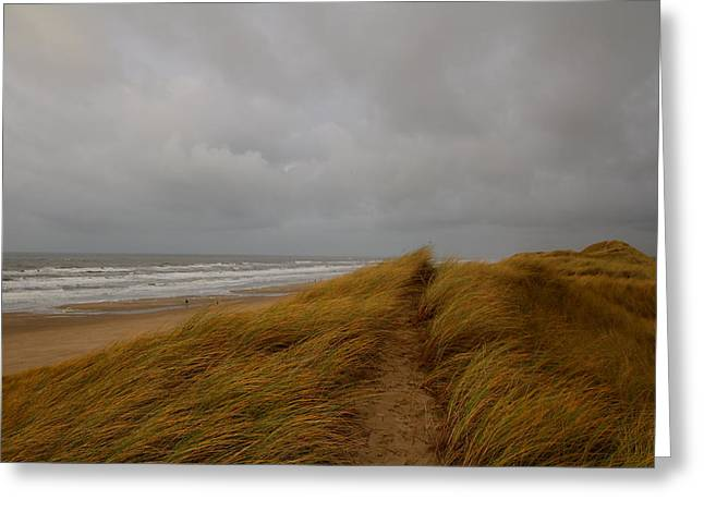 From Dunes To Sea Greeting Card