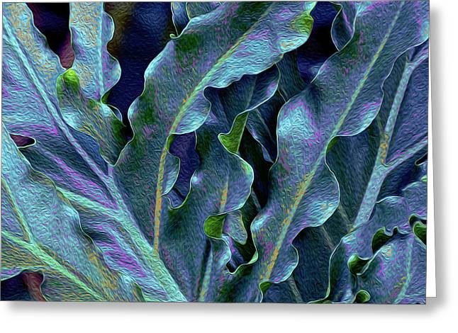 Fronds 53 Greeting Card