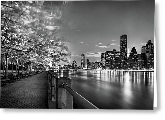 Greeting Card featuring the photograph Front Row Roosevelt Island by Az Jackson