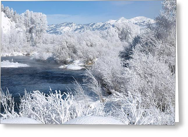 Frost Along The River Greeting Card