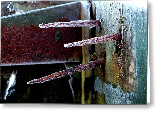 Frost And Rust Greeting Card